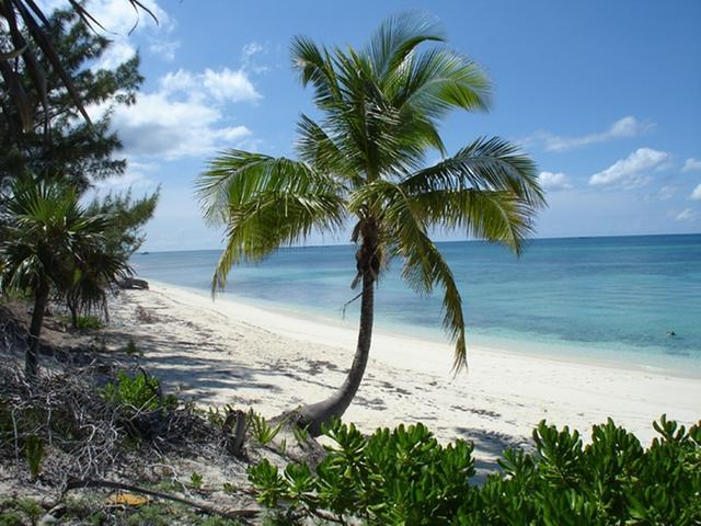 /listing-lots-acreage-in-rose-island-29136.html from Coldwell Banker Bahamas Real Estate