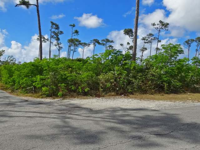 /listing-lots-acreage-in-freeport-32286.html from Coldwell Banker Bahamas Real Estate