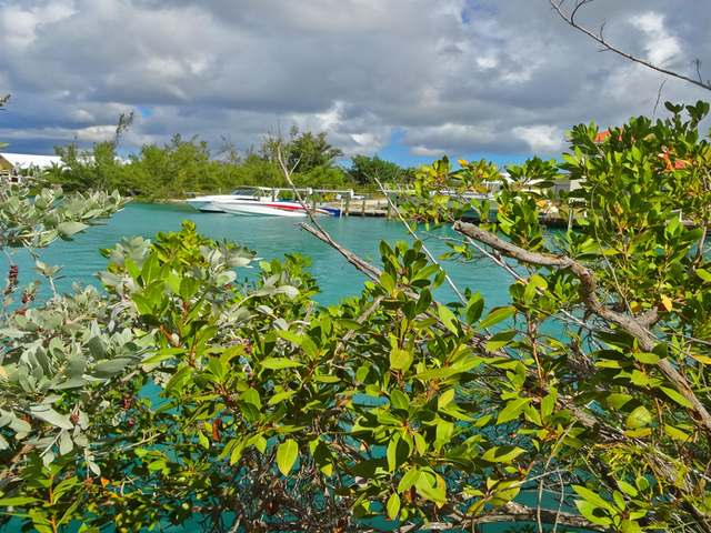 /listing-lots-acreage-in-freeport-32287.html from Coldwell Banker Bahamas Real Estate