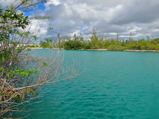 /listing-lots-acreage-in-freeport-32290.html from Coldwell Banker Bahamas Real Estate