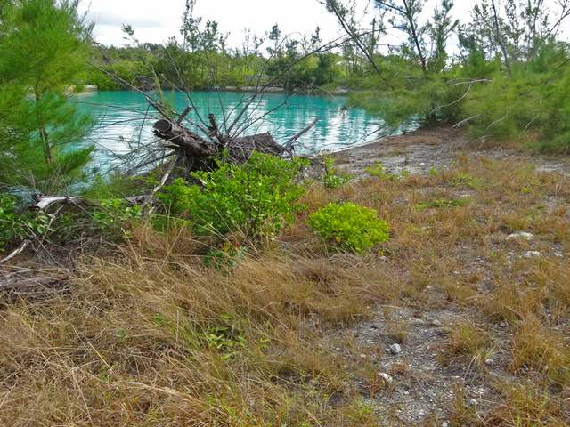 /listing-lots-acreage-in-freeport-32288.html from Coldwell Banker Bahamas Real Estate