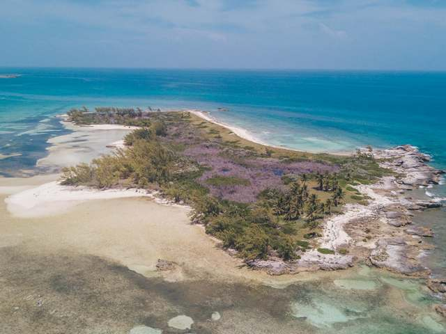 Bahamas Real Estate on Berry Islands For Sale - ID 26276