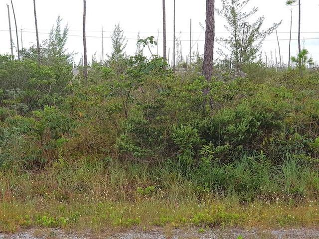 /listing-lots-acreage-in-derby-33981.html from Coldwell Banker Bahamas Real Estate