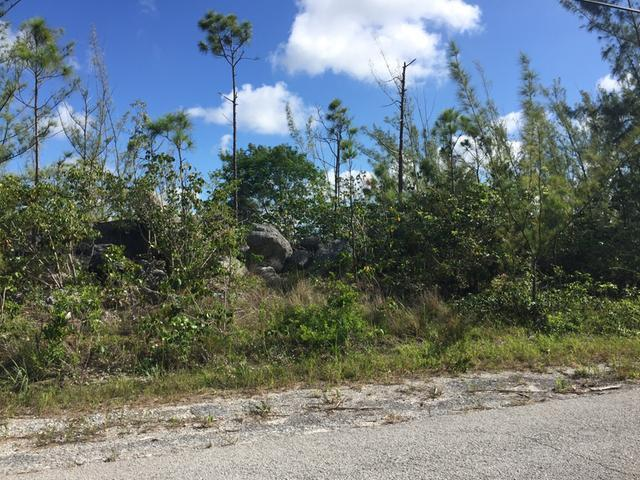 /listing-lots-acreage-in-lucaya-30889.html from Coldwell Banker Bahamas Real Estate