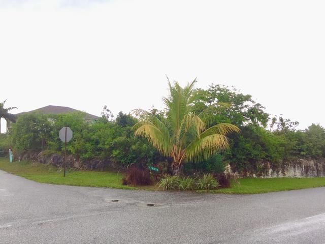 /listing-lots-acreage-in-west-bay-street-26685.html from Coldwell Banker Bahamas Real Estate