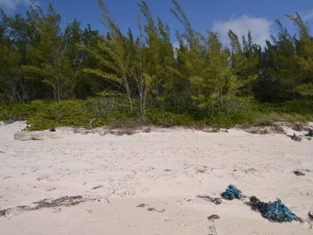 /listing-lots-acreage-in-bahama-palm-shores-27195.html from Coldwell Banker Bahamas Real Estate