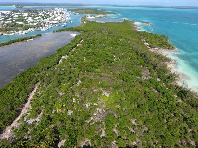 /listing-lots-acreage-in-russell-island-27577.html from Coldwell Banker Bahamas Real Estate