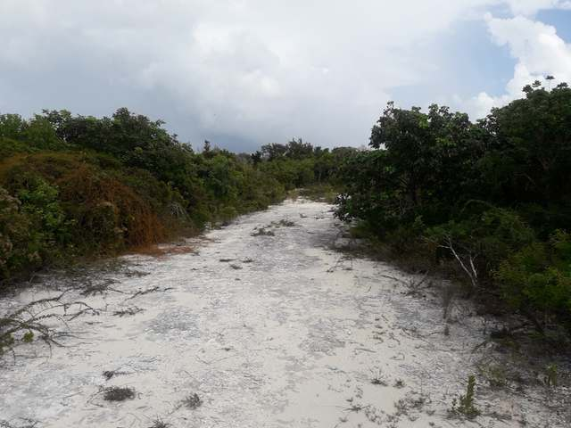 /listing-lots-acreage-in-columbus-landings-29803.html from Coldwell Banker Bahamas Real Estate