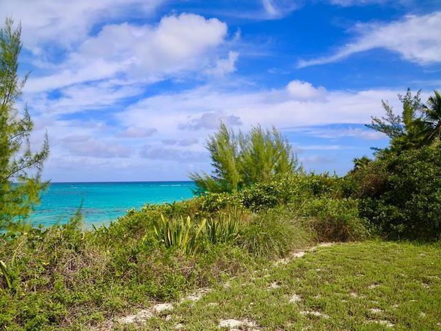 /listing-lots-acreage-in-palmetto-point-27747.html from Coldwell Banker Bahamas Real Estate
