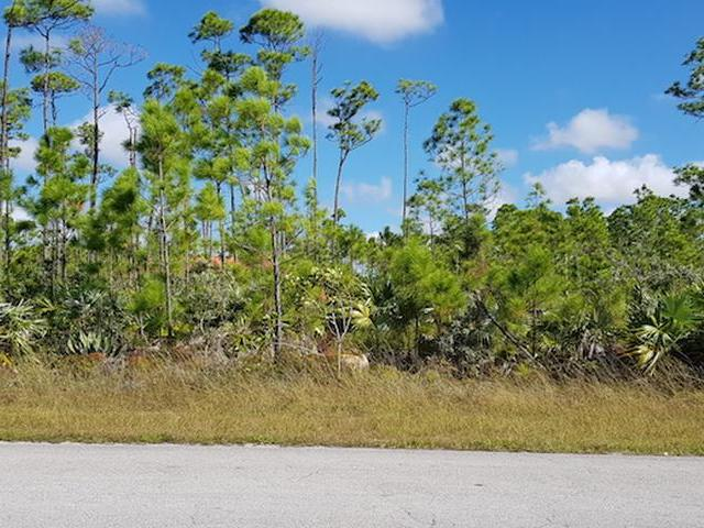 /listing-lots-acreage-in-sentinel-bay-subdivision-30888.html from Coldwell Banker Bahamas Real Estate