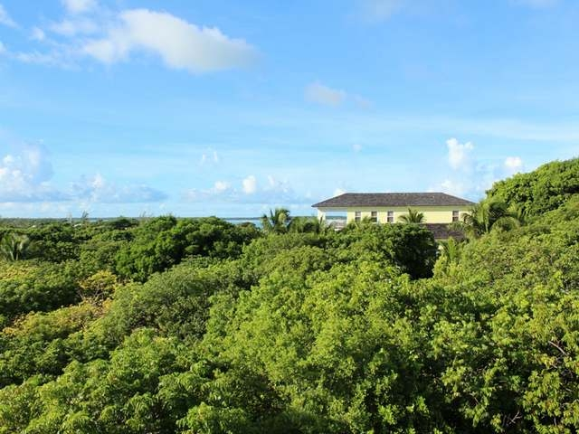 /listing-single-family-home-in-harbour-island-28248.html from Coldwell Banker Bahamas Real Estate