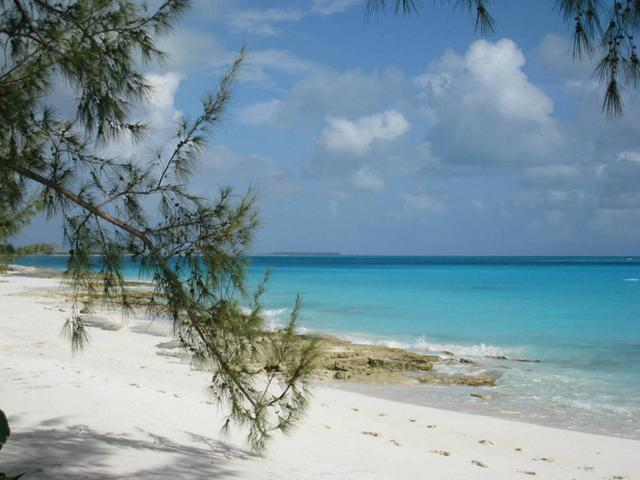 /listing-lots-acreage-in-simms-28292.html from Coldwell Banker Bahamas Real Estate