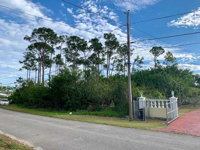 /listing-lots-acreage-in-yeomanwood-subdivision-29140.html from Coldwell Banker Bahamas Real Estate