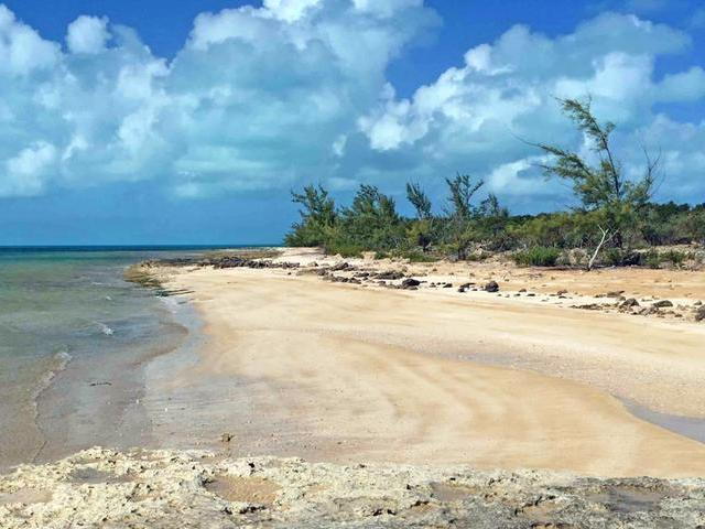 /listing-lots-acreage-in-simms-28688.html from Coldwell Banker Bahamas Real Estate