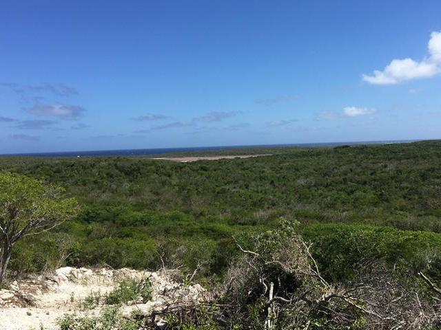 /listing-lots-acreage-in-salt-pond-29280.html from Coldwell Banker Bahamas Real Estate