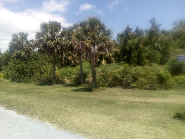 /listing-lots-acreage-in-bahamia-29742.html from Coldwell Banker Bahamas Real Estate