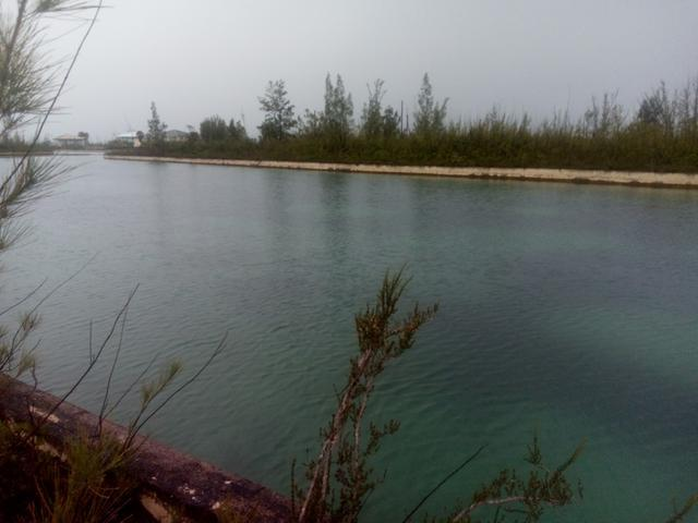 /listing-lots-acreage-in-dover-sound-29814.html from Coldwell Banker Bahamas Real Estate