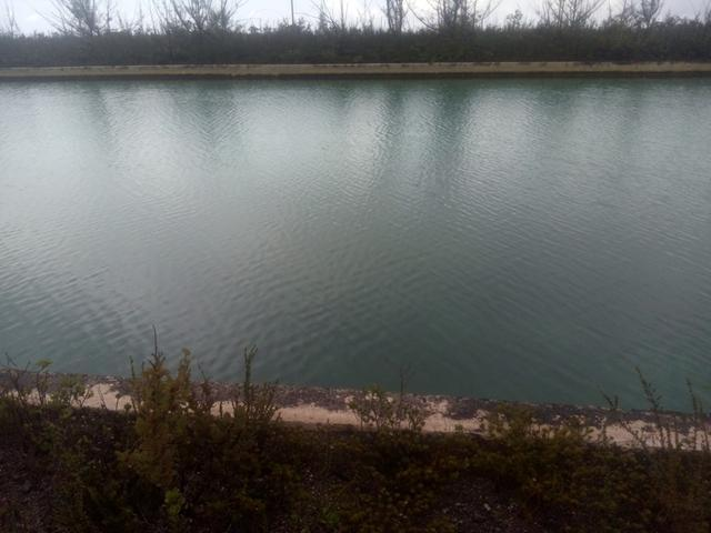 /listing-lots-acreage-in-grand-bahama-east-29853.html from Coldwell Banker Bahamas Real Estate