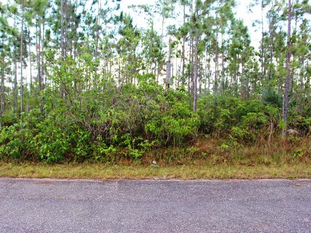 /listing-lots-acreage-in-lincoln-green-29840.html from Coldwell Banker Bahamas Real Estate