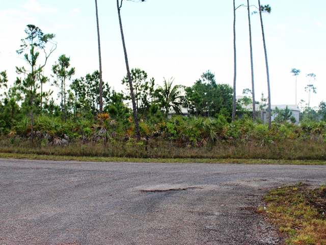 /listing-lots-acreage-in-lincoln-green-29839.html from Coldwell Banker Bahamas Real Estate