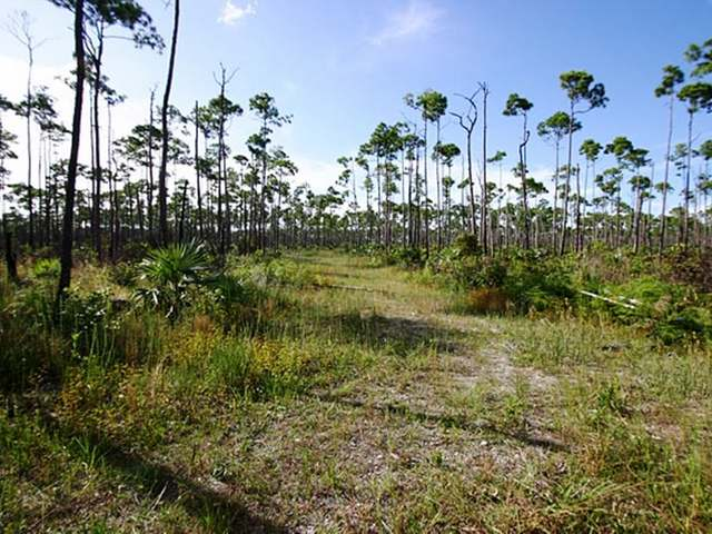 /listing-lots-acreage-in-lucaya-30021.html from Coldwell Banker Bahamas Real Estate