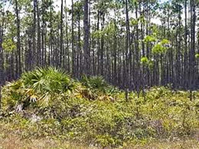 /listing-lots-acreage-in-lucaya-30000.html from Coldwell Banker Bahamas Real Estate