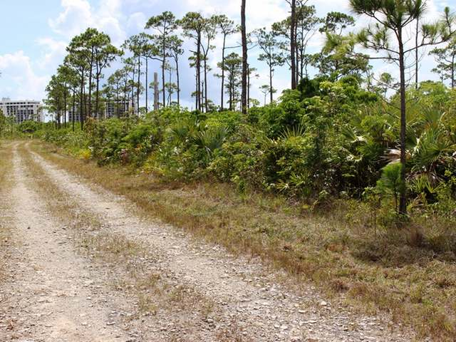/listing-lots-acreage-in-arden-forest-29999.html from Coldwell Banker Bahamas Real Estate