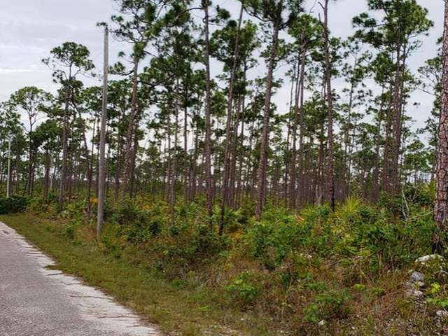 /listing-lots-acreage-in-shannon-country-club-30046.html from Coldwell Banker Bahamas Real Estate