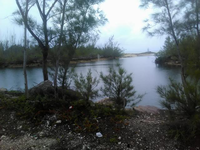 /listing-lots-acreage-in-other-grand-bahama-freeport-30249.html from Coldwell Banker Bahamas Real Estate