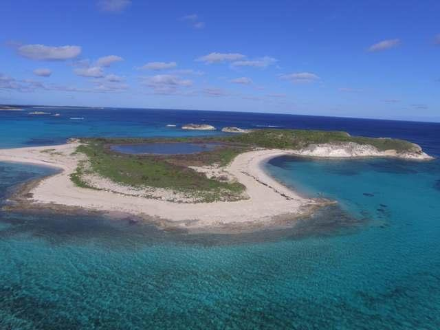 /listing-private-island-in-other-san-salvador-30751.html from Coldwell Banker Bahamas Real Estate