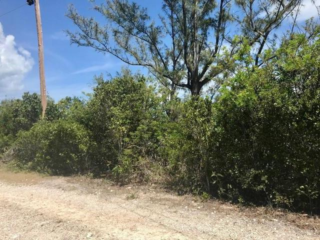 /listing-lots-acreage-in-rainbow-bay-30764.html from Coldwell Banker Bahamas Real Estate