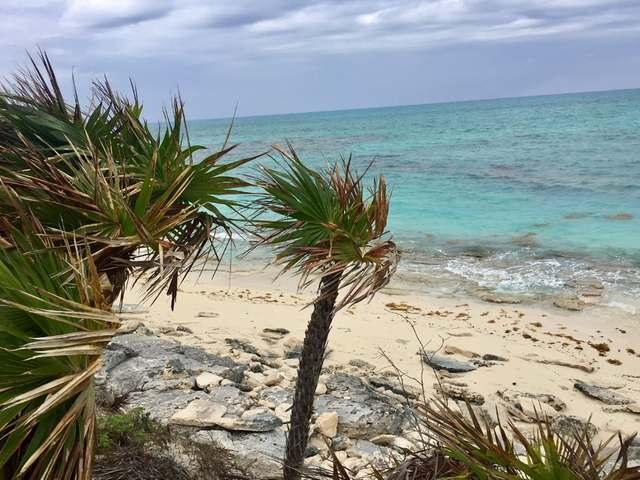 /listing-lots-acreage-in-crooked-island-30780.html from Coldwell Banker Bahamas Real Estate