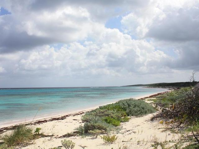 /listing-lots-acreage-in-morrisville-31526.html from Coldwell Banker Bahamas Real Estate