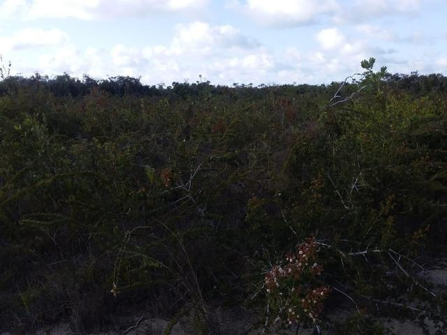 /listing-lots-acreage-in-columbus-landings-30996.html from Coldwell Banker Bahamas Real Estate