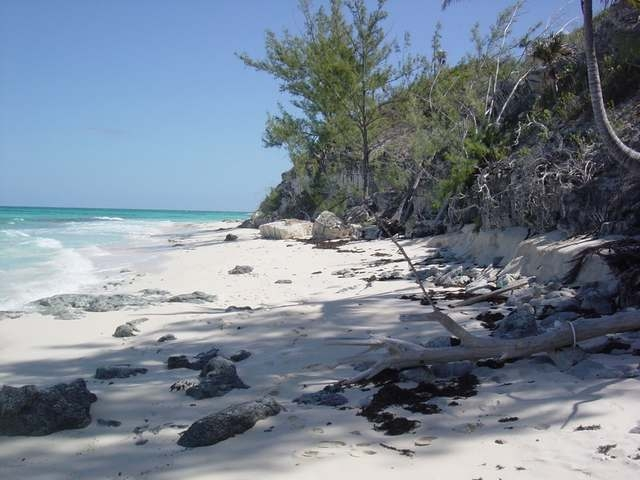 /listing-single-family-home-in-palmetto-point-31414.html from Coldwell Banker Bahamas Real Estate
