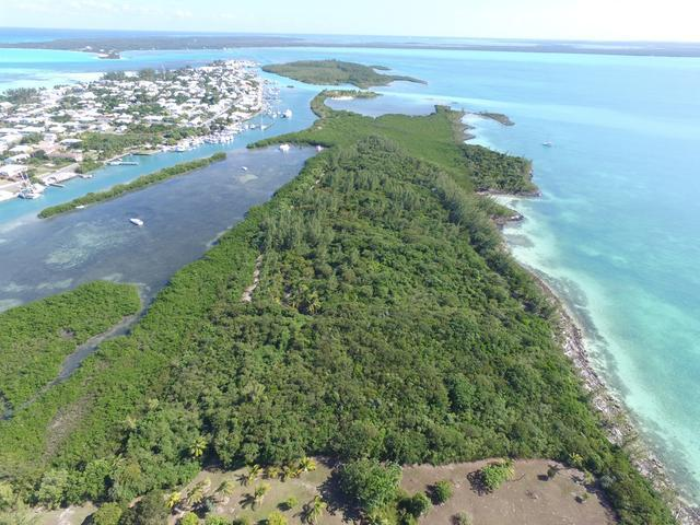 /listing-lots-acreage-in-russell-island-31974.html from Coldwell Banker Bahamas Real Estate