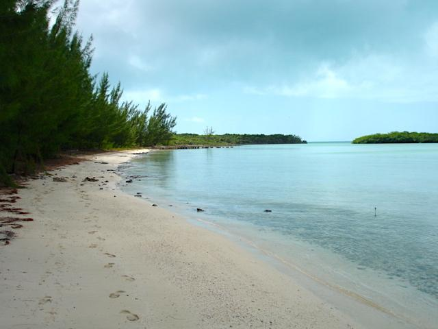 /listing-lots-acreage-in-bunches-33903.html from Coldwell Banker Bahamas Real Estate