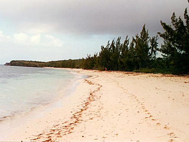 /listing-lots-acreage-in-hawks-nest-32614.html from Coldwell Banker Bahamas Real Estate