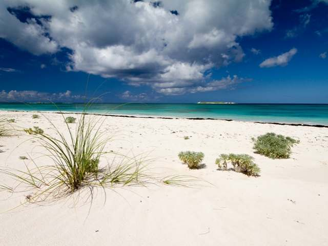 /listing-lots-acreage-in-double-bay-34529.html from Coldwell Banker Bahamas Real Estate
