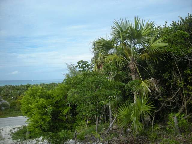 /listing-lots-acreage-in-great-harbour-cay-35835.html from Coldwell Banker Bahamas Real Estate