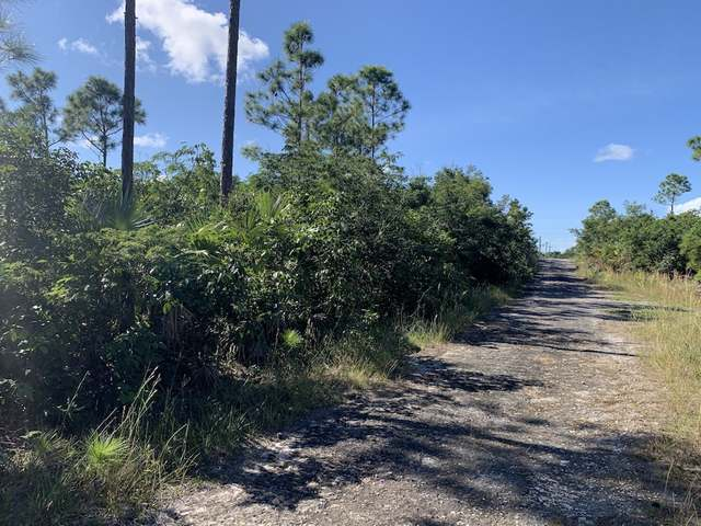 /listing-lots-acreage-in-richmond-park-35090.html from Coldwell Banker Bahamas Real Estate