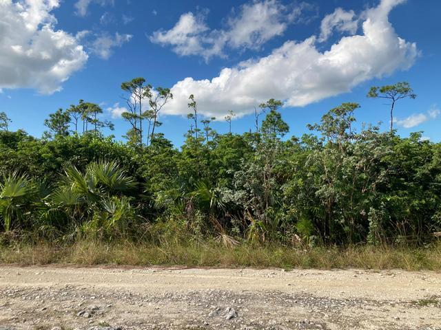 /listing-lots-acreage-in-arden-forest-35106.html from Coldwell Banker Bahamas Real Estate