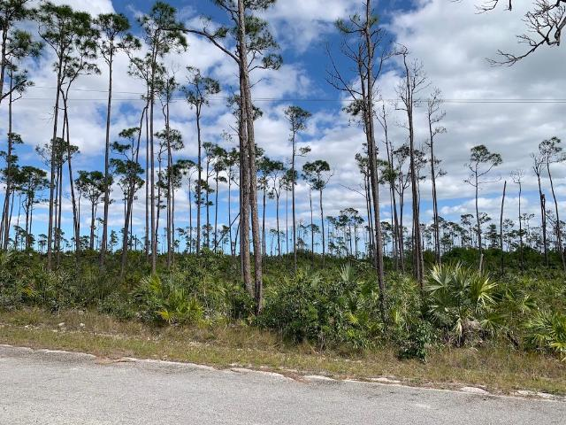 /listing-lots-acreage-in-shannon-country-club-35866.html from Coldwell Banker Bahamas Real Estate