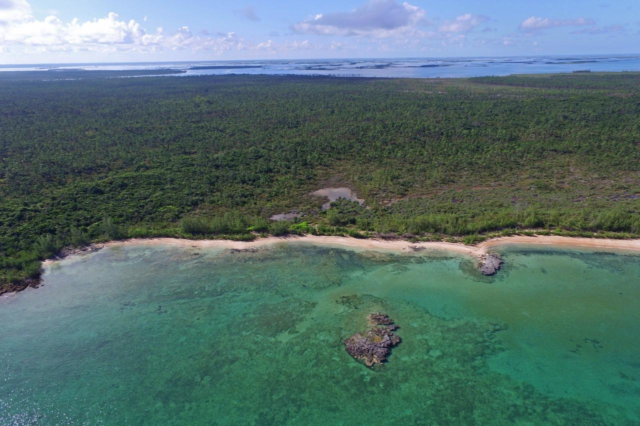 /listing-lots-acreage-in-other-abaco-36891.html from Coldwell Banker Bahamas Real Estate