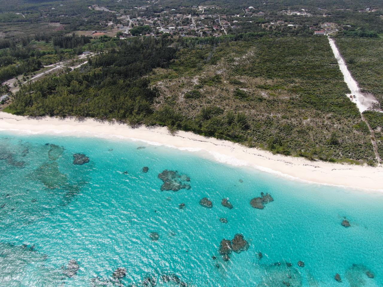 /listing-lots-acreage-in-palmetto-point-37202.html from Coldwell Banker Bahamas Real Estate