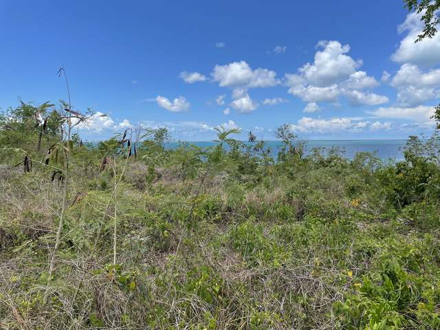 /listing-lots-acreage-in-green-turtle-cay-37854.html from Coldwell Banker Bahamas Real Estate