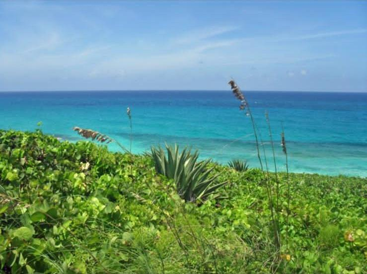 /listing-lots-acreage-in-simms-38208.html from Coldwell Banker Bahamas Real Estate