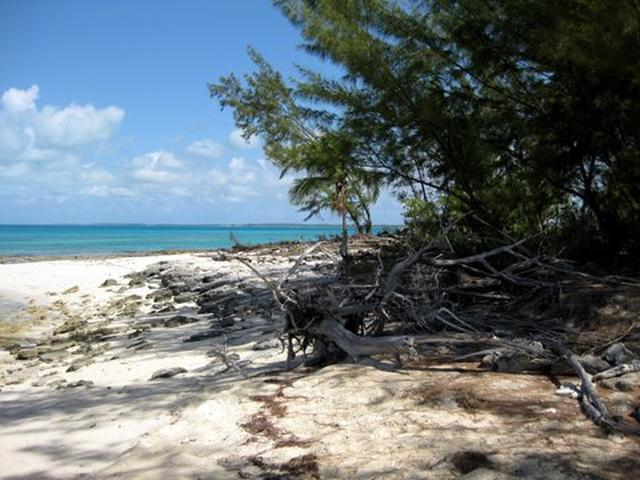 /listing-lots-acreage-in-pigeon-cay-38139.html from Coldwell Banker Bahamas Real Estate