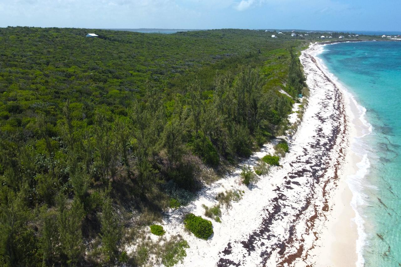 /listing-lots-acreage-in-little-harbour-38339.html from Coldwell Banker Bahamas Real Estate