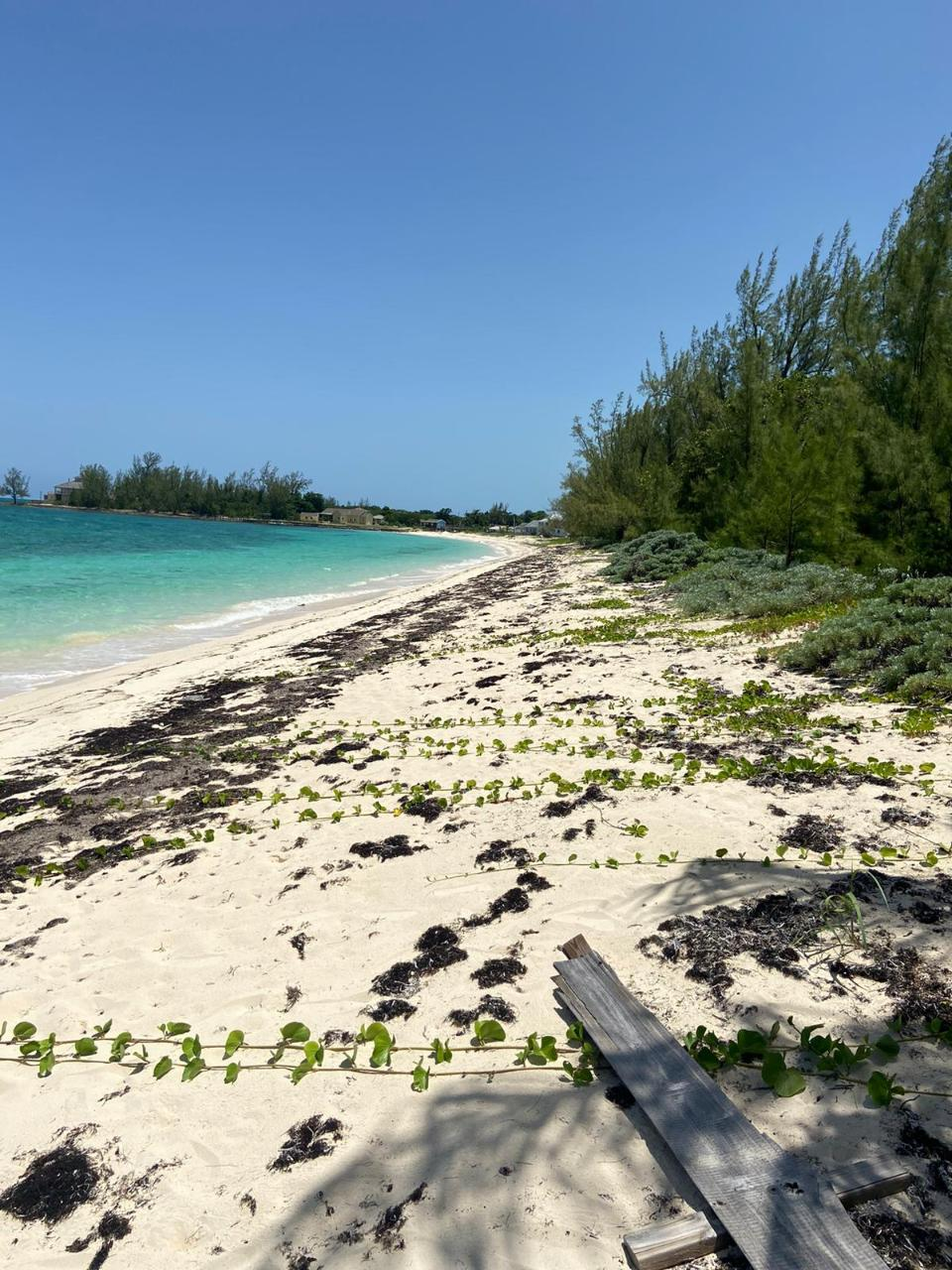 /listing-lots-acreage-in-nicholls-town-38736.html from Coldwell Banker Bahamas Real Estate